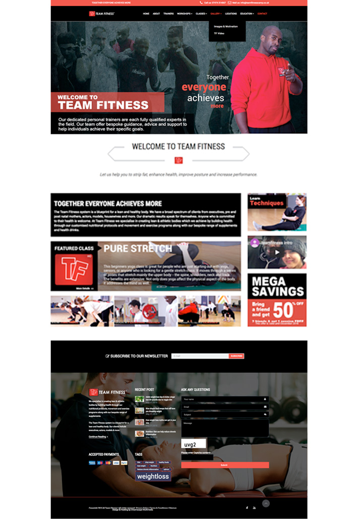 Team Fitness Camp website - Click to launch